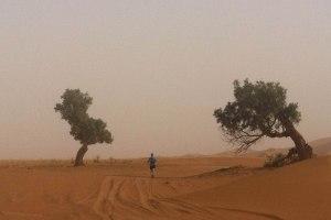 Day5_Devon dust