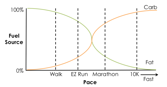 Relationship between running pace and fuel usage.